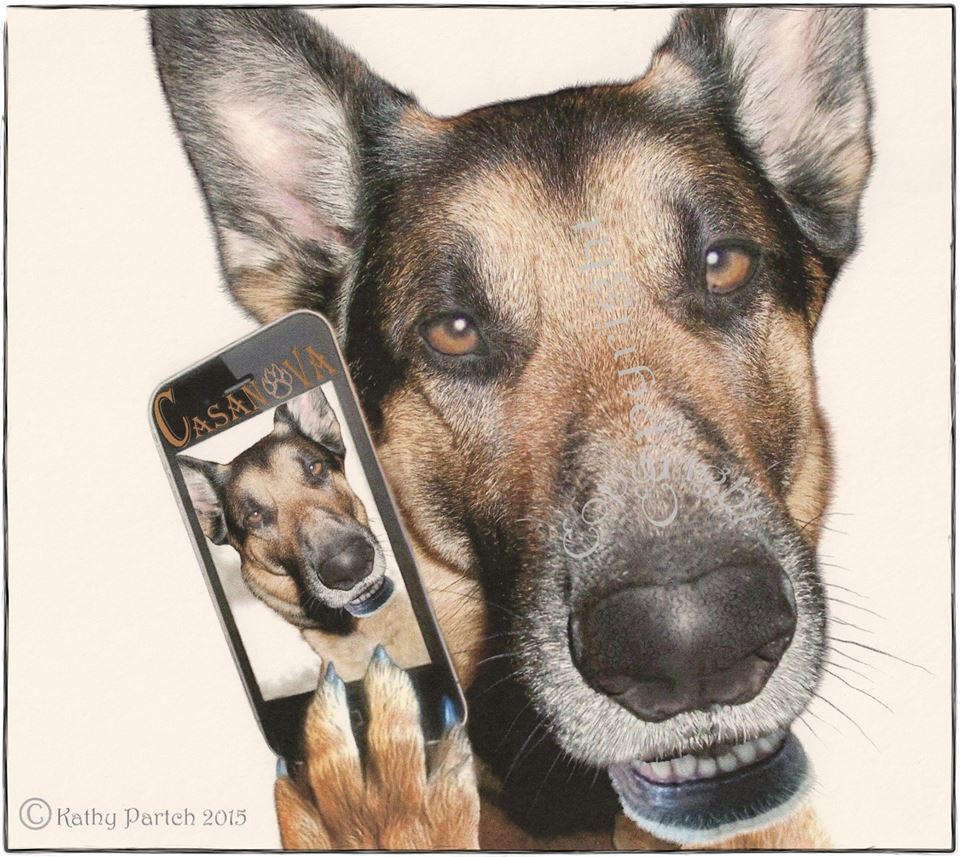 cas-selfie-web