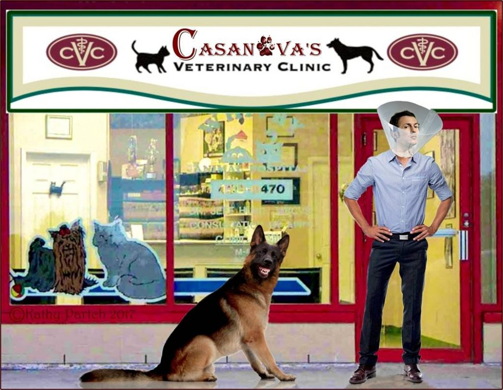Cas Vet Clinic