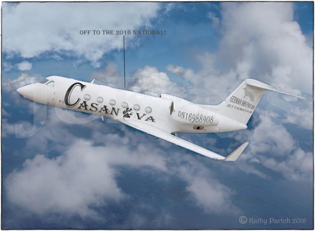 casnatl_ksp16website