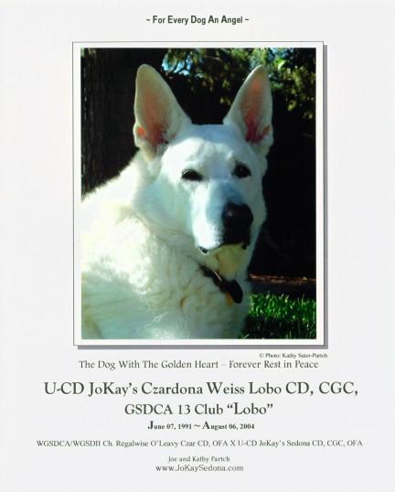 Lobo's Memorial Page
