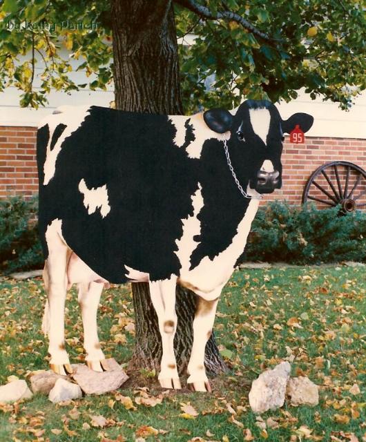 cow2front_ksp_web
