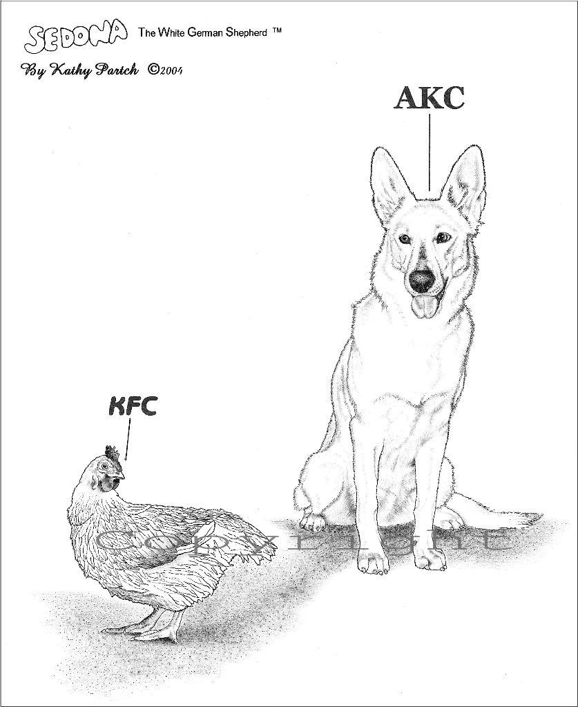 kfc_akc_kpartch'04